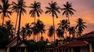 reisebericht thailand, krabi, koh lanta, sonnenuntergang, palmen, lantas lodge, bungalows, suedostasien, asien