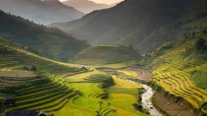 reisebericht vietnam, sapa, laochi, reisterrassen, reisfelder, trekking, hmong, sehenswuerdigkeit, sightseeing, nordvietnam, suedostasien, asien